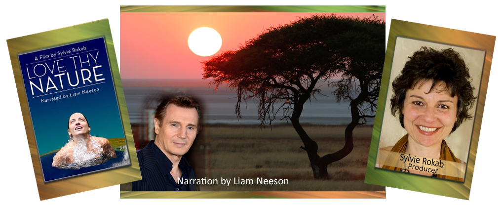 Humanitarian Award Liam Neeson